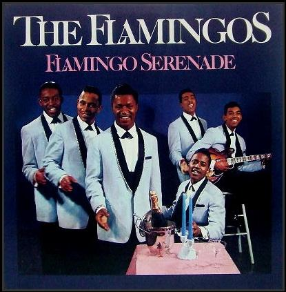 LP-304 - Flamingo Serenade
